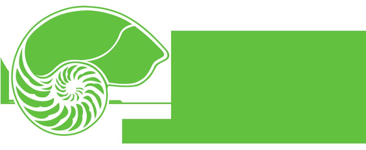 dentilus